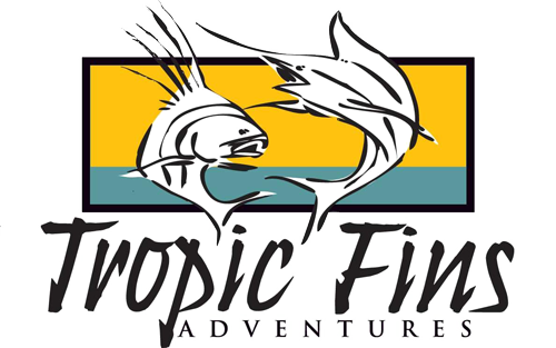 Tropicfins Adventures