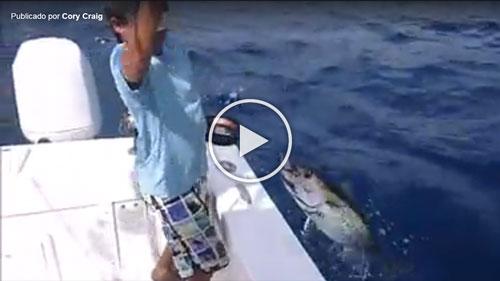tuna-hand-line